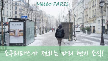 파리 특파원: 파리의 현재 날씨를 알려드립니다! #파리여행 #파리폭설 #뮤지엄패스
