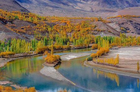파키스탄 판다르