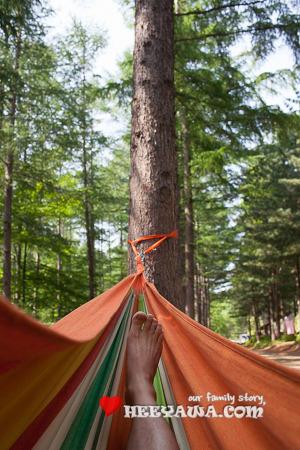 캠핑#13 - 청옥산 자연휴양림, 처음으로 비 안왔다