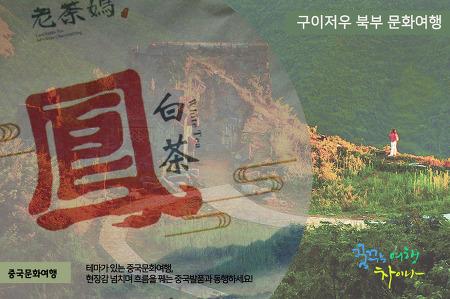 [특별] 구이저우 북부 - 구이양, 쭌이, 마오타이, 츠수이, 충칭 6박7일