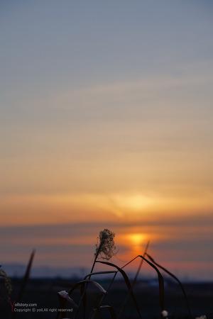 붉게 타오르던 아침 하늘..
