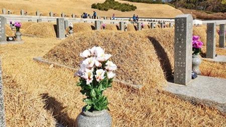 국립5.18민주묘지 정화활동