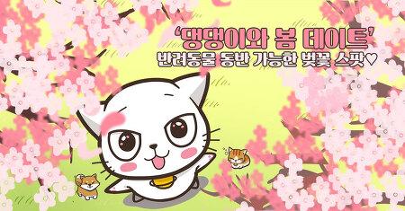 '댕댕이와 봄 데이트' 반려동물 동반 가능한 벚꽃 스팟♥