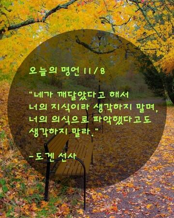 오늘의 명언 11/8