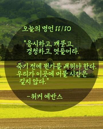 오늘의 명언 11/10