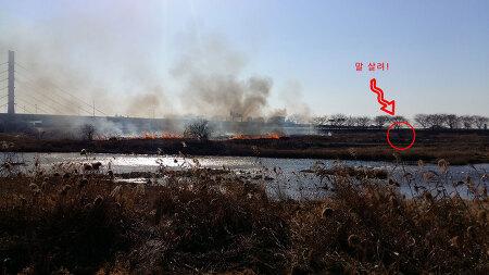 2019년 1월 전주천변 불구경
