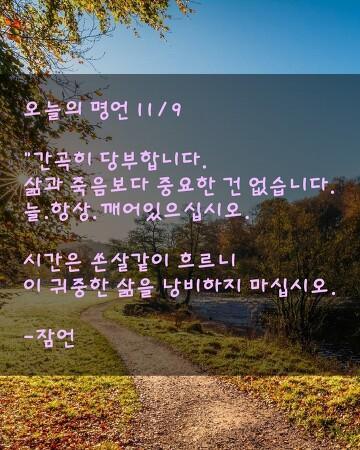 오늘의 명언 11/9