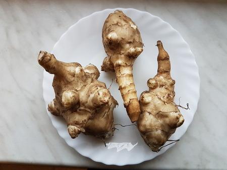 돼지감자, 감자해바라기, 해뿌리, 땅사과, 땅배의 공통점은 바로 뚱딴지