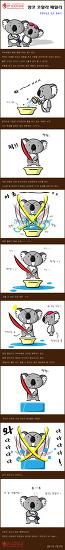 양도 코알라 패밀리 - 부부싸움은 칼로 물베기