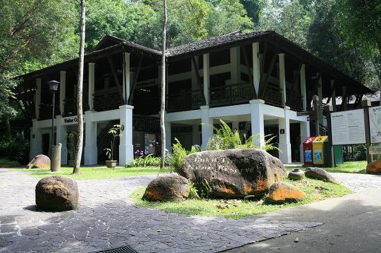 [부킷티마 국립공원]싱가포르에서 트래킹할 생각을 하다니..
