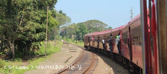 <스리랑카> 아누라다푸라 가는 길