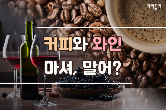 커피와 와인 마셔, 말어?