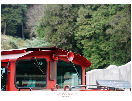 대만여행 - 세계 3대산악열차 아리산 산림열차를 타고