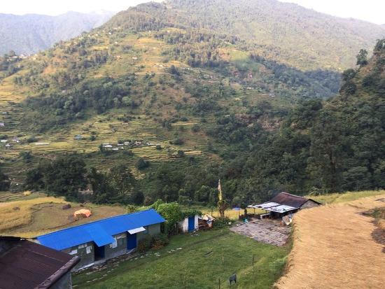 네팔 안나푸르나+푼힐 10박12일 트레킹 -3일- 티켓퉁가 > 울레리 > 반단티 > 고레파니