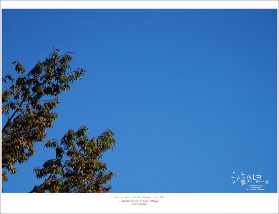 가을 인천대공원