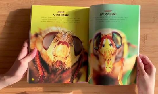 """초접사 사진집 """"로봇 아닙니다 곤충입니다"""""""