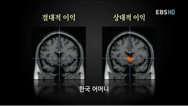 상대방과의 비교에 민감한 한국인