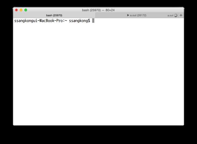 """터미널 탭의 제목을 """"command (pid)"""" 로 변경하기."""