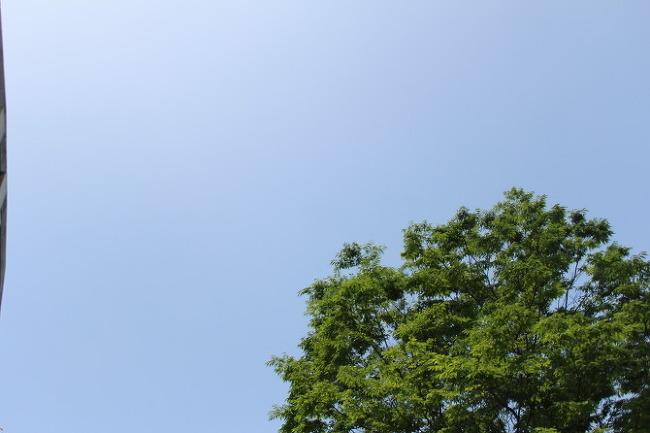 오늘은 하늘이 참 예뻐요~