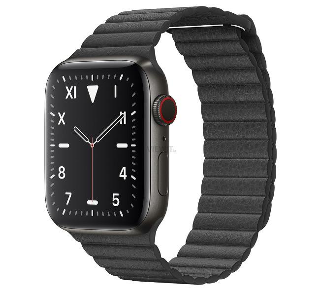 [스마트워치] 애플 워치 에디션 시리즈 5(Apple Watch Edition Series 5)