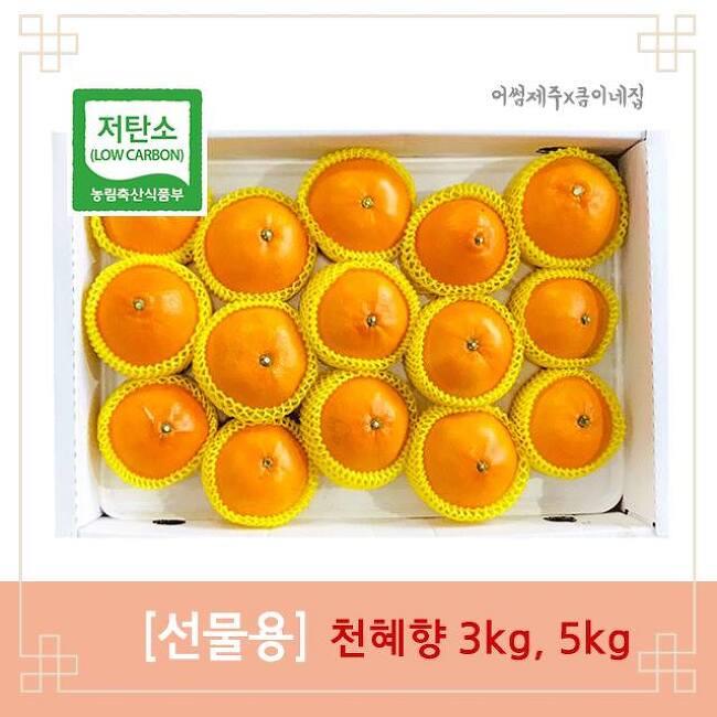 설선물 어썸제주 천혜향 선물용 예약주문받습..