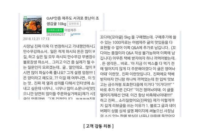 어썸제주 한라봉 천혜향 설날선물세트 기업제..