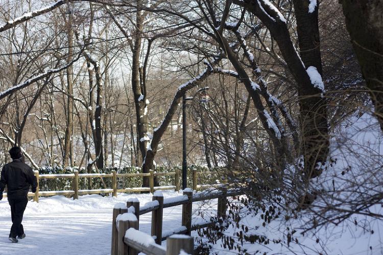 겨울의 남산