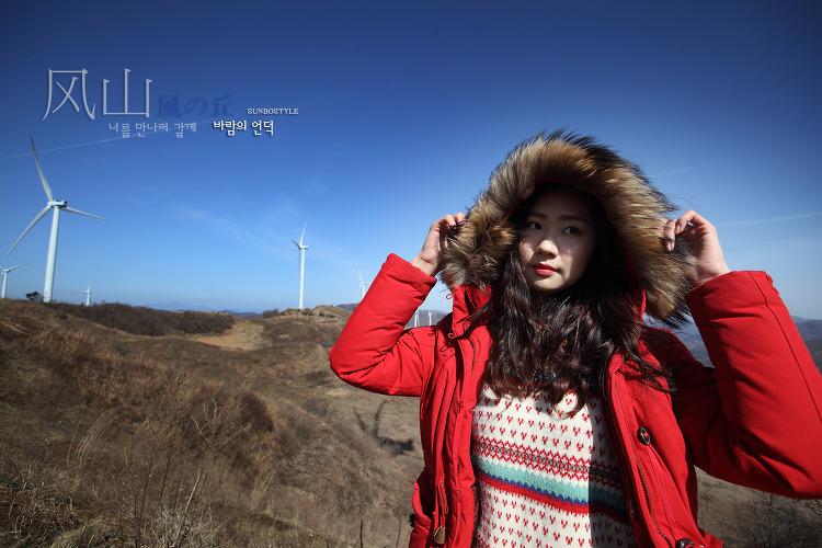 바람의 언덕