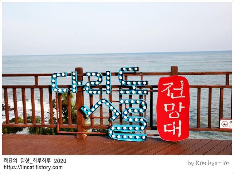 [적묘의 부산]청사포 다릿돌 전망대, 무료입장, 바다전망대,겨울바다, 겨울여행