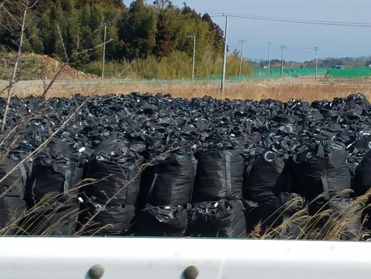 일본 정부, 후쿠시마 방사능 오염토에 '채소 재배' 실험 논..