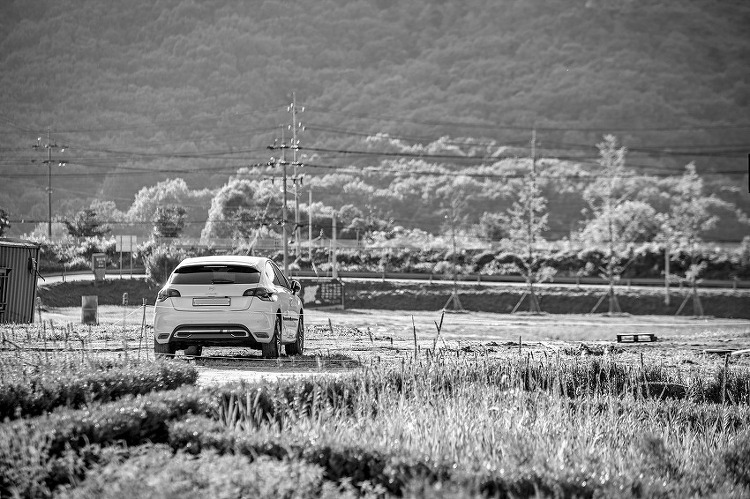 [SDQ] 시그마 50-100mm f1.8 율곡수목원 테스트