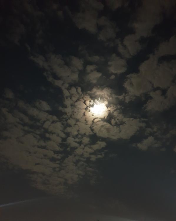 밤하늘[구름속에 달빛]