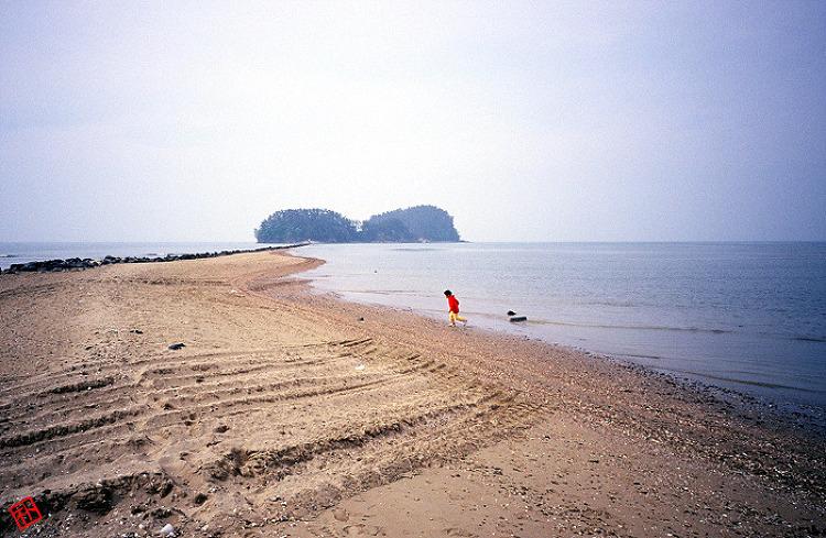 갯벌이 드러난 바닷길을 걷다