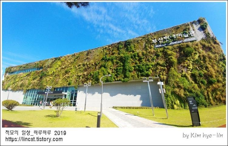 [적묘의 부산]부산현대미술관,미술관 안 도서관