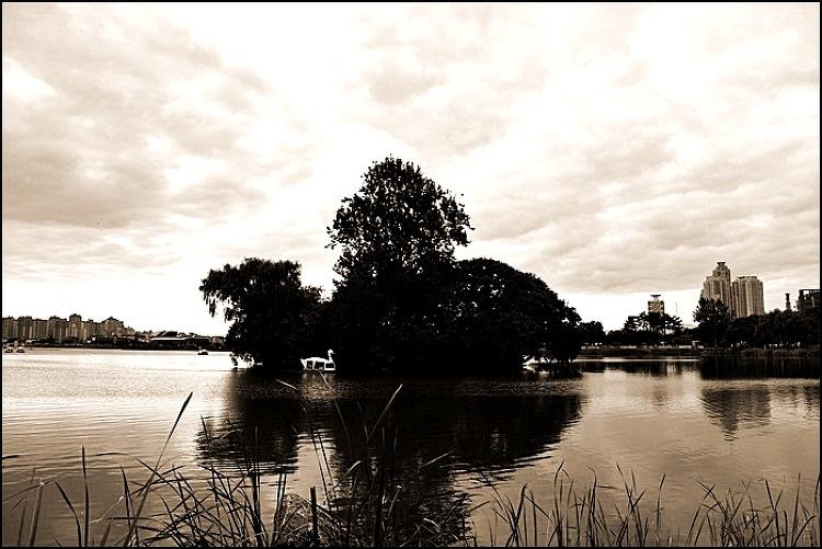 10월 대구 수성못 풍경