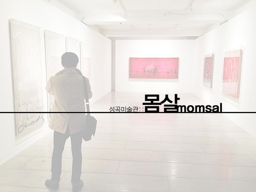 [지후트리 전시여행]성곡미술관 - 몸살(momsal),