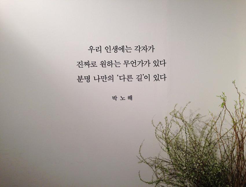 [전시회 리뷰] 박노해 사진전 - 세종문화회관