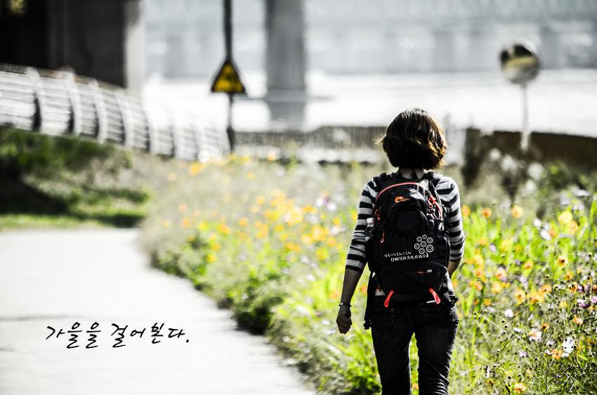 가을을 걸어 본다.