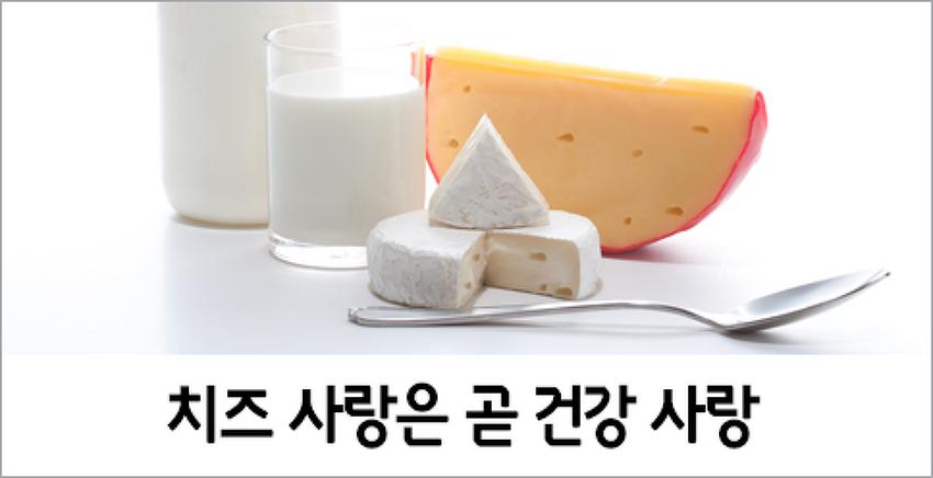 치즈 사랑은 곧 건강 사랑