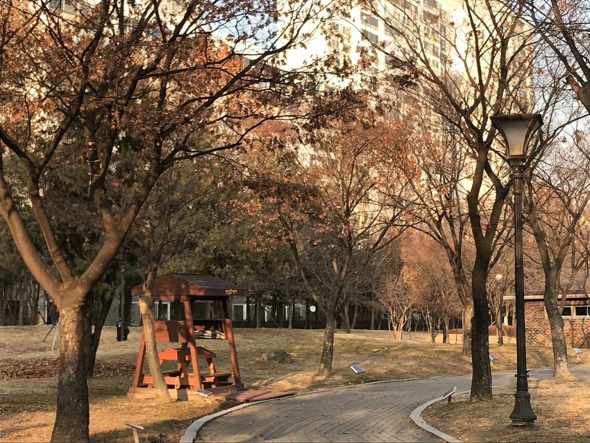 겨울속으로 성큼성큼, 12월 초 공원의 오후