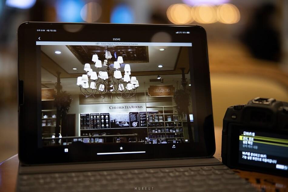 캐논 EOS RP 무선 연결과 iPad용 DPP Express 앱으로 사진 편집하기