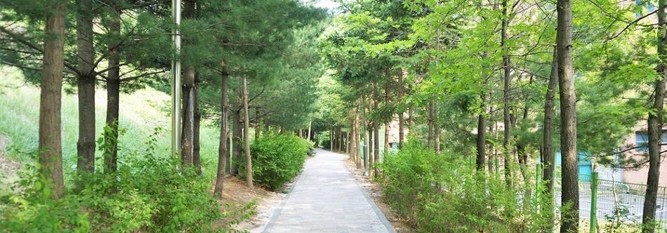 경기도 나들이 명소를 찾는다면? <용인 강남공원>으로!
