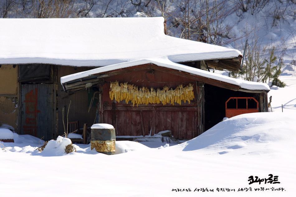 백두대간의 겨울풍경